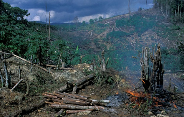 Causes For Degradation And Depletion Of Natural Resources